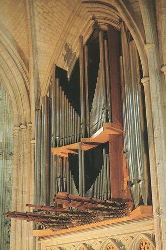 Les grandes orgues de la cathédrale ont été construites en 1966 à la place d'un instrument dont les plus célèbres titulaires ont été Paul et Jacques BERTHIER, ainsi que le Docteur LAUBRY